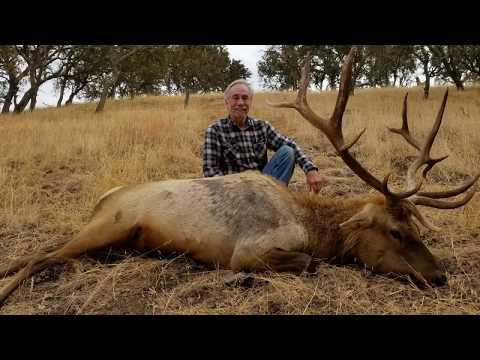 Tule Elk Hunt - Oak Stone Outfitters