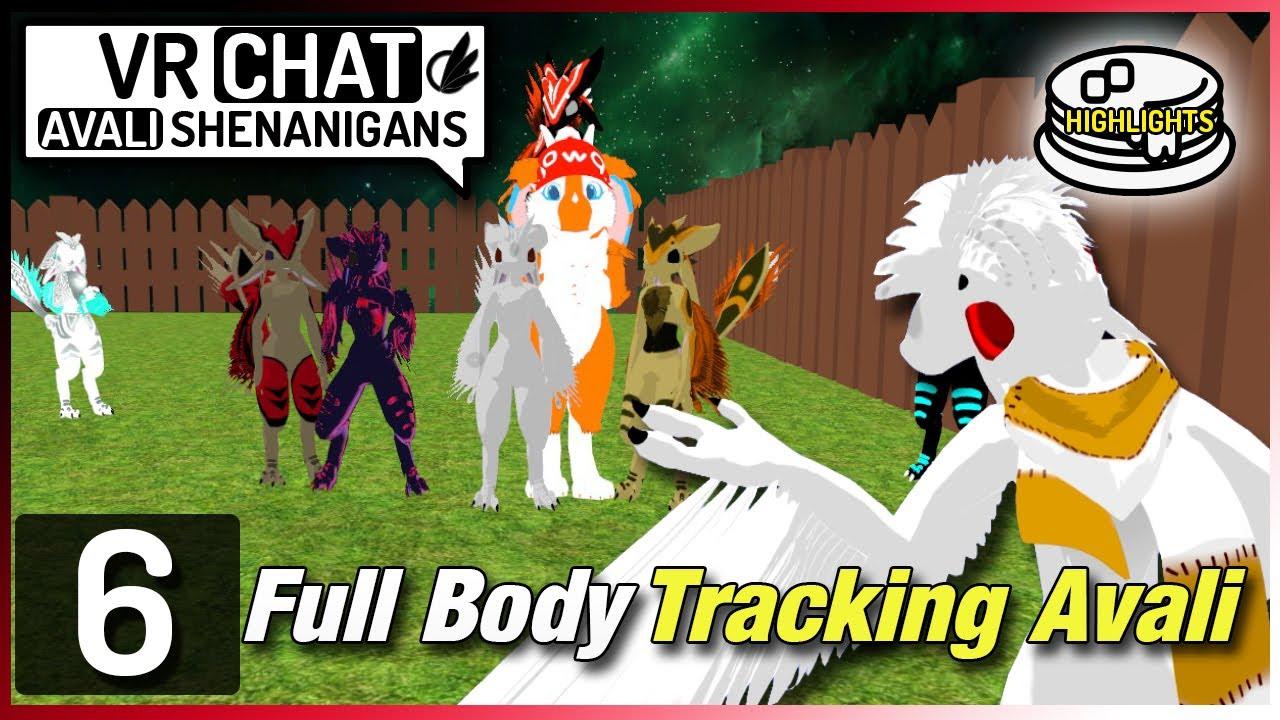 VRChat RP Shenanigans Ep.6 | Full Body Tracking Avali - YouTube