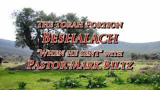 Saturday, January 19, 2019: When he sent (Beshalach)