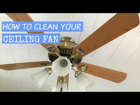 How to clean your ceiling fan