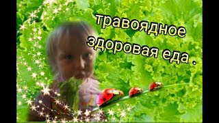 Ребенок ест листья салата .THE CHILD IS EATING LETTUCE ! Видео для детей .