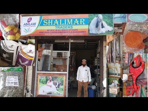 Adilaid goat feed equipments & Accessories ( Shalimar trader
