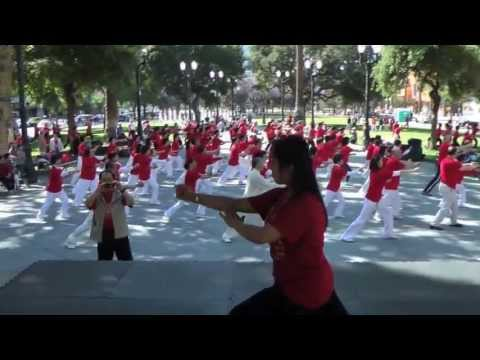 Kung Fu Tai Chi Day group Tai Chi 24 Demonstration