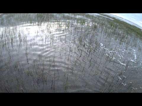 Georgia Inshore Fishing Jekyll Island Flood Tide ACTION!!!!!!!!!