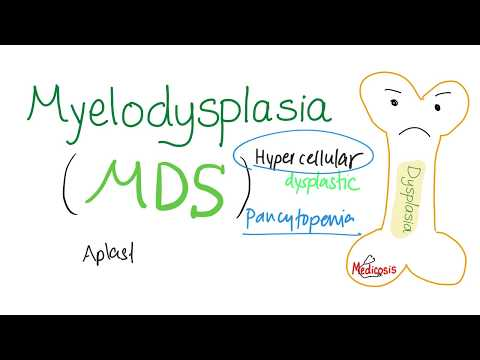 Myelodysplastic Syndrome (MDS) | Between The Normal and The Acute Leukemia