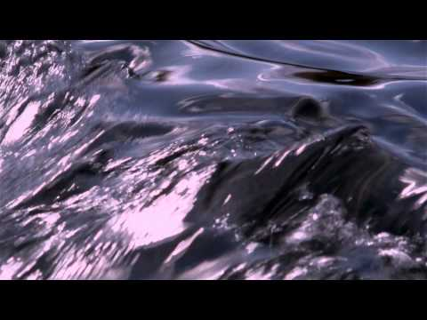 """Wisdom Film - Thich Nhat Hanh - """"The End of Suffering"""""""