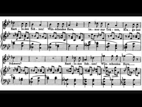 Franz Schubert - Schwanengesang