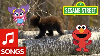 Sesame Street: Dance Like a Bear! | Animal Dance #4