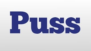 Puss meaning and pronunciation