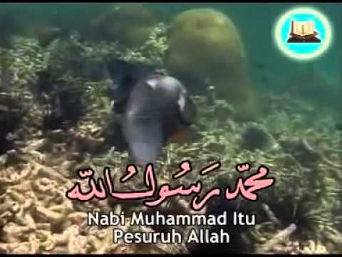 Sifat 20 - صفة الله - Atttibutes of Allah - Sifat Allah ( Tauheed )