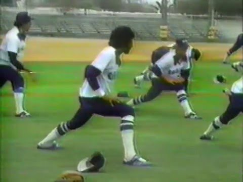 1981 - Chicago White Sox, With New Owners, Prepare for New Season
