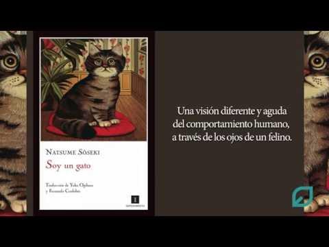 Libro recomendado: Soy un gato, de Natsume Soseki