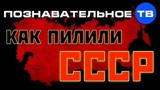 Как пилили СССР (Познавательное ТВ, Николай Стариков)