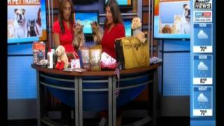 4th Of July Pet Safety Tips On Fox News Baltimore With Lilly And Belle The Yorkies And The Pet Lady