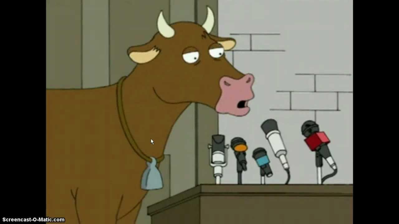 cow speech