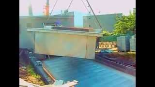 Jeřáb-bazén-usazení --  Crane swimming establishment