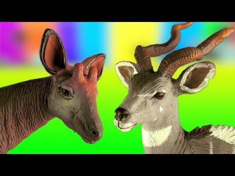Amazing Wild Animals ANTELOPE Toy Collection - Oryx Nyala Okapi Kudu