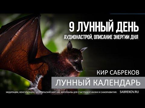 4,5 Ноября - 9 ЛУННЫЙ ДЕНЬ - Лунный календарь / Кир Сабреков