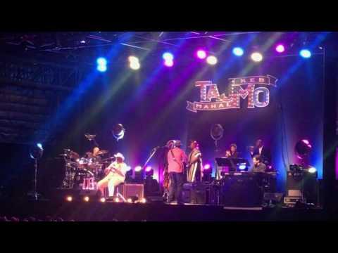 TajMo- Life is Beautiful