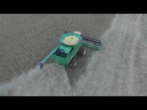 Soybean Harvest, Pettis County MO - 2016