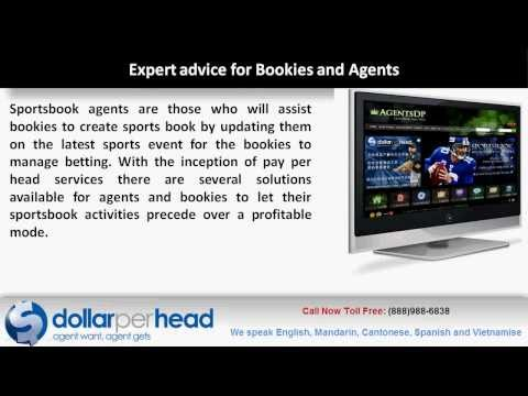 Experienced Support Team for Asian Bookies at www.dollarperhead.com