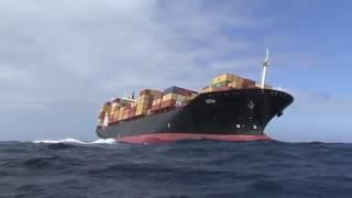 rena ship disaster
