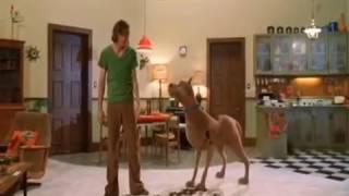 Scooby Doo - Scorreggi ed erutti