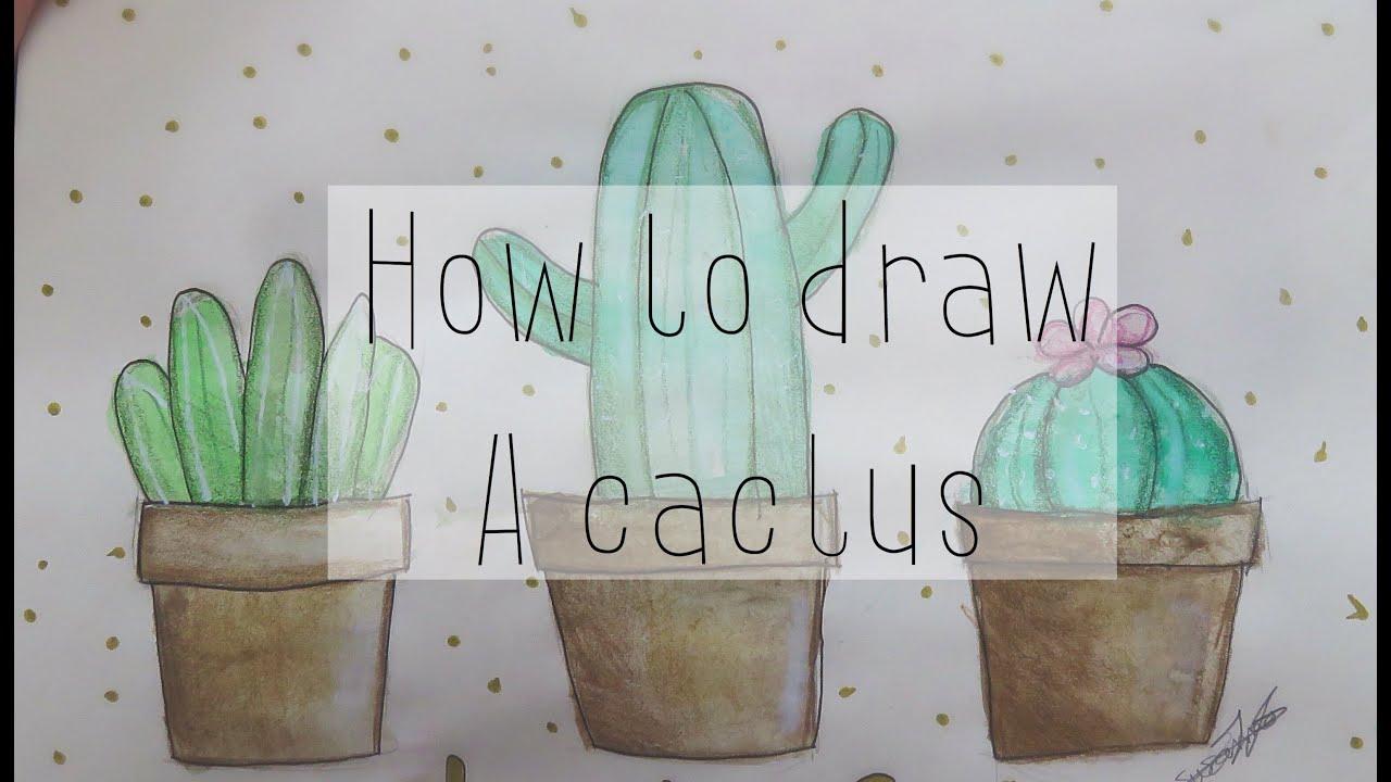 How To Draw A Cactus Tumblr Drawicorn Youtube