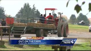 Fall Fun Days: Hozak Farms