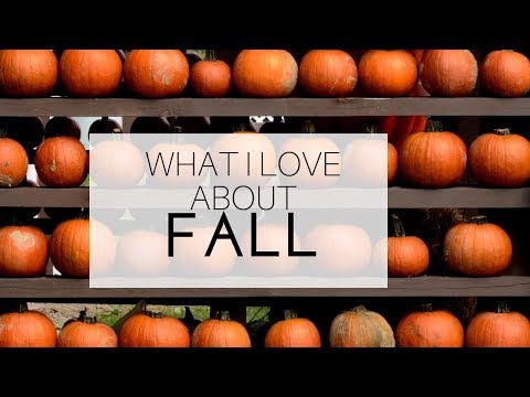 5 THINGS I LOVE ABOUT FALL | MY FAVORITES OF THIS SEASON