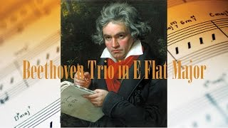 🎼 Best of Beethoven - Beethoven Trio - Classical Music for Relaxation - Best of Classical Music
