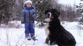 Тимур и Ко. Зимняя прогулка всей семьей. Играем в прятки с Бернским Зенненхундом.