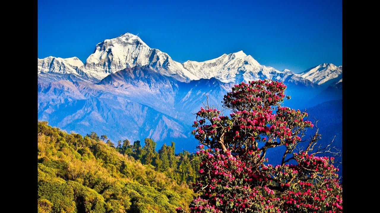 Djoser Nepal Uitzicht klimaat