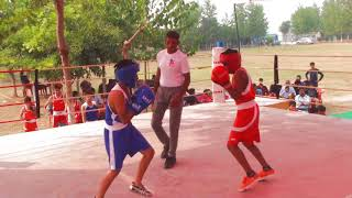 GSFI / Sub Junior Boxing Championship / AFS Connecting India