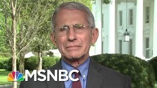 Fauci: Reopening U.S. Could Be Dependent On Mass Antibody Testing | Deadline | MSNBC