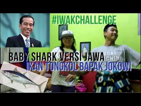BABY SHARK CHALLENGE VERSI JAWA IWAK TONGKOL BAPAK JOKOWI