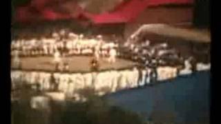 ブルース・リーの「燃えよドラゴン」を見て感動して始めた少林寺拳法二...