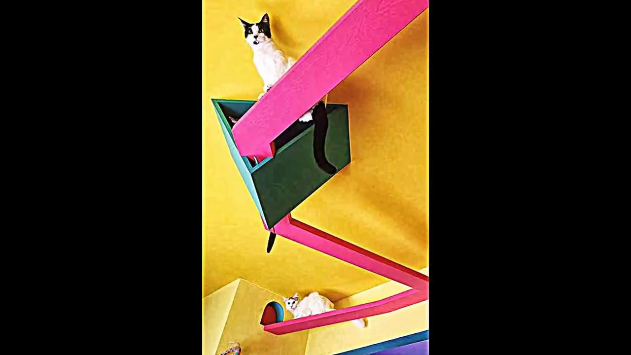 10 Erstaunlich Clevere Möbel Ideen Auch Für Ihr Haustier   YouTube
