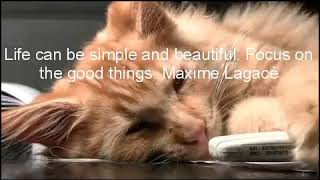 Relaxing baby music, with inspiring life quotes.
