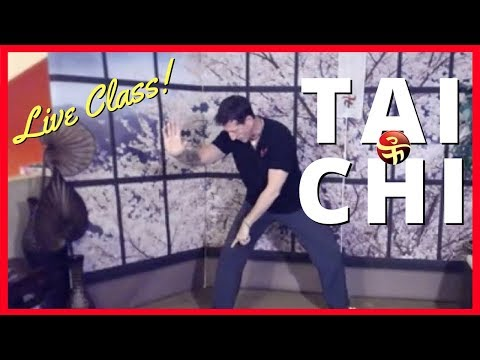 Tai Chi for Beginners Q&A  and Long form lesson