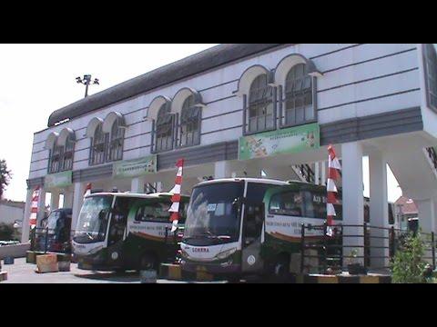 Bus Eksekutif di Terminal Rawamangun: Lorena Mercedes-Benz  OH 1626 Euro 4 dkk siap buat mudik 2016