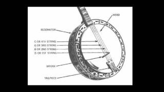 How To Hold & Tune The Plectrum Banjo with Eddie Peabody