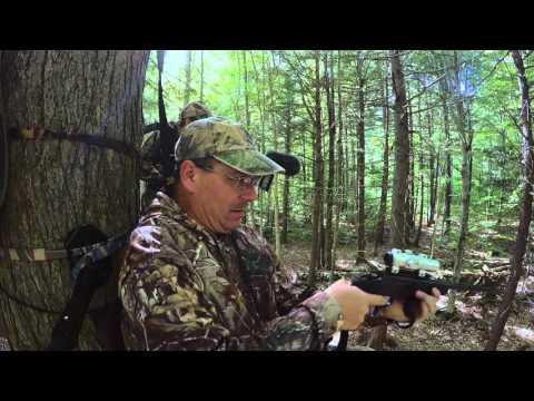 NH Bear Hunt With Handgun