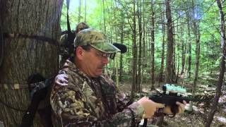 NH Bear Hunt with Handgun
