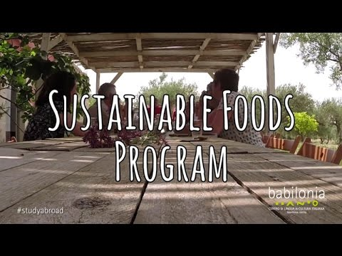 UMN program in Sicily: Sustainable Foods Program