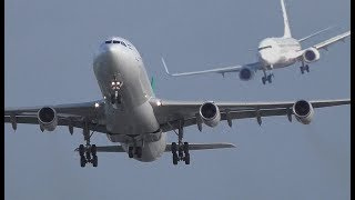 "Storm ""Herwart"" at DUS Airport, two go arounds crosswind landings A380, A340, A330, Sturm"