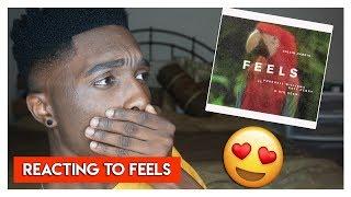 Calvin Harris - Feels ft. Pharrell Williams, Katy Perry, & Big Sean (REACTION) | Jayden Reacts