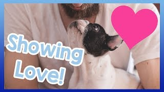 How to Show Your Dog Love! How to Let Your Dog Know You Love Them! ...