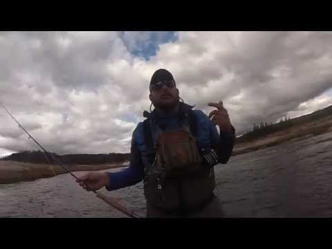 Yellowstone Fly Fishing October 2015 - GoPro