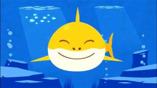 Baby Shark Different Versions   Pinkfong Sing and Dance   Animal Songs   Baby Shark App Educational